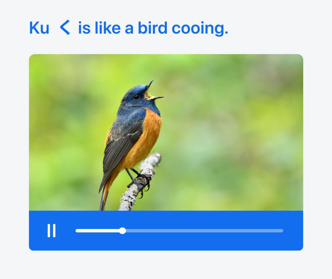 On Busuu, we help learners remember 'ku' < in hiragana with a cooing bird